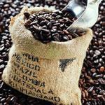 Кофе моносорта